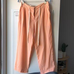 Aritzia Wilfred silk pants